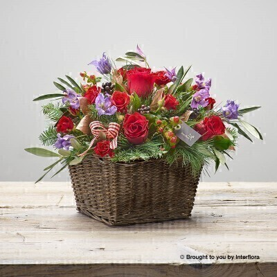 Festive Fun Basket of Flowers: Booker Flowers and Gifts