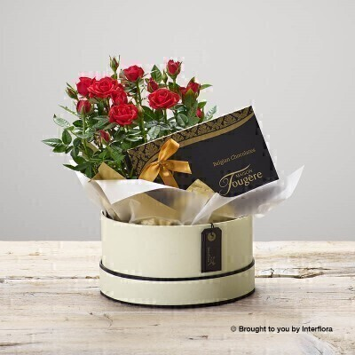 Ruby Rose Hatbox and Chocolates: Booker Flowers and Gifts