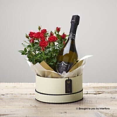 Ruby Rose Hatbox and Prosecco: Booker Flowers and Gifts